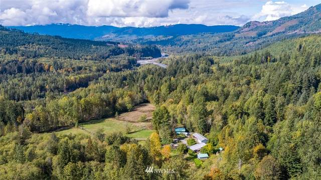 8835 Mount Baker Highway, Deming, WA 98244 (MLS #1851622) :: Reuben Bray Homes