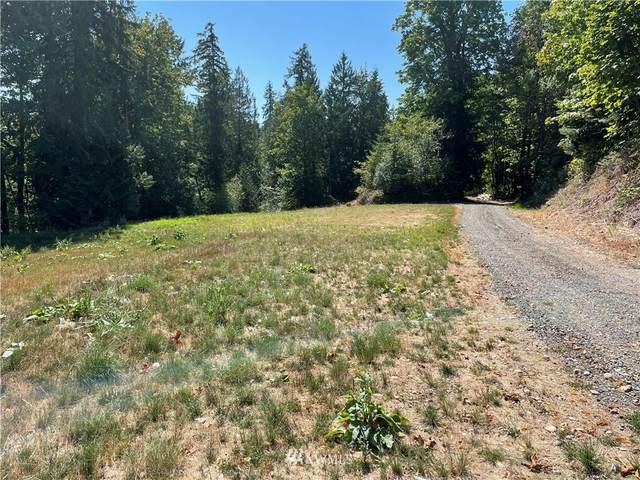 115 Newell Road, Castle Rock, WA 98611 (#1851754) :: Northwest Home Team Realty, LLC