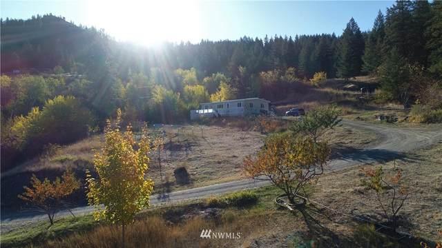 4 Steep Mountain Road, Oroville, WA 98844 (#1852147) :: Provost Team | Coldwell Banker Walla Walla