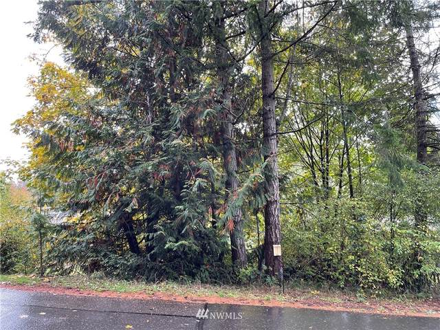80 SE Clematis Avenue, Shelton, WA 98584 (#1852172) :: McAuley Homes