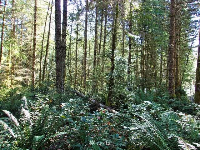 0 L Lee Valley Road, Quilcene, WA 98376 (#1852453) :: Alchemy Real Estate