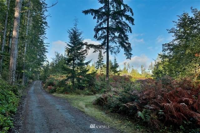 2761 Silent Cedars Lane, Langley, WA 98260 (#1852463) :: Front Street Realty