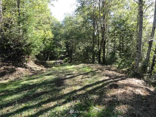 369 Short Road, Morton, WA 98356 (#1853123) :: Neighborhood Real Estate Group