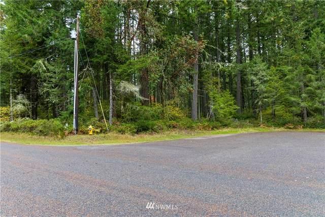 10909 Madrona Drive, Anderson Island, WA 98303 (#1853367) :: Costello Team