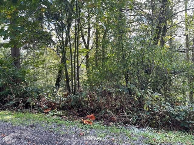 0 119th Place NE, Granite Falls, WA 98252 (#1853748) :: Neighborhood Real Estate Group