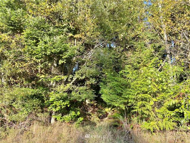 0 Sycamore Road, Coupeville, WA 98239 (#1853751) :: Front Street Realty