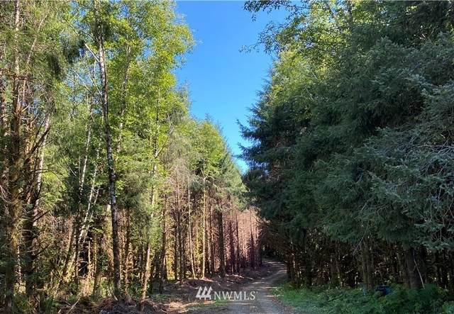 660 lot 4 Chinook Valley Road, Chinook, WA 98614 (#1853790) :: Shook Home Group