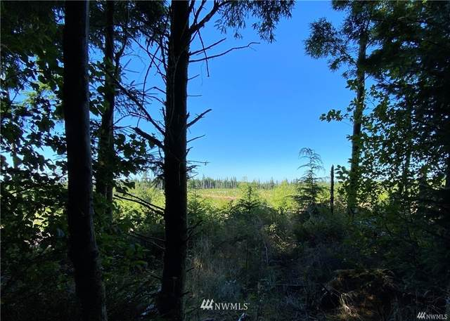 660 lot 5 Chinook Valley Road, Chinook, WA 98614 (#1853795) :: Shook Home Group