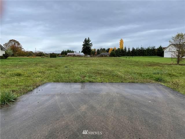 133 Skyhawk Drive, Toledo, WA 98591 (#1853863) :: Alchemy Real Estate
