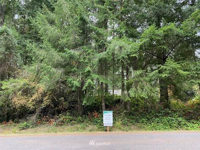 10304 Paine Road, Anderson Island, WA 98303 (#1853889) :: Keller Williams Realty