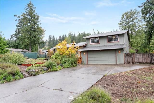 3854 Brownsville Drive, Bellingham, WA 98226 (#1854399) :: Northwest Home Team Realty, LLC