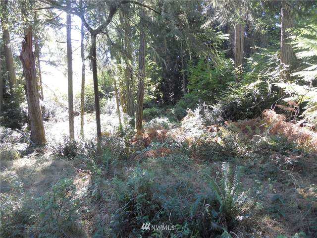 10325 Totem Way, Anderson Island, WA 98303 (#1854442) :: Neighborhood Real Estate Group
