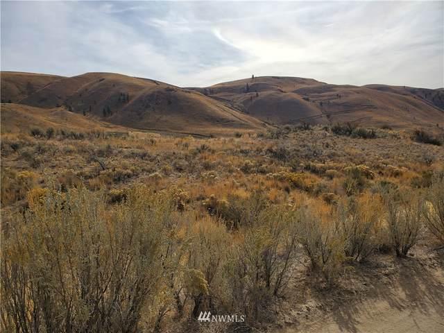 0 NNA Spring Canyon Road, Orondo, WA 98843 (#1854730) :: Provost Team | Coldwell Banker Walla Walla