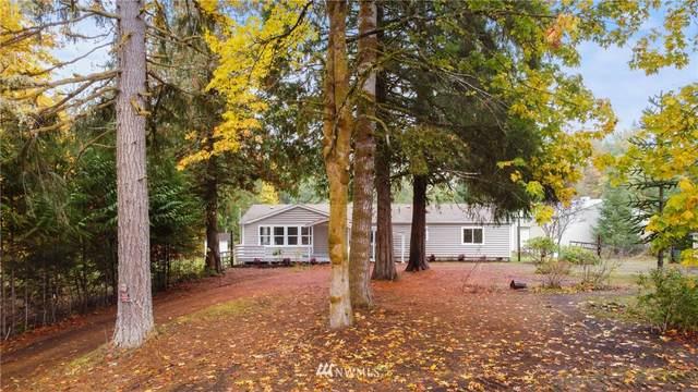 91 SE Crater Road, Shelton, WA 98584 (#1854739) :: M4 Real Estate Group
