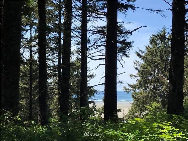 14 Sprucewood Lane, Copalis Beach, WA 98535 (#1854903) :: Keller Williams Western Realty