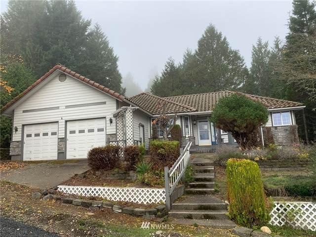 90 N Rebecca Lane, Hoodsport, WA 98548 (#1854970) :: Better Properties Real Estate