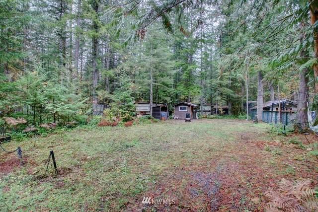 66 3 Schinn Canyon Circle, Deming, WA 98244 (#1855178) :: Neighborhood Real Estate Group