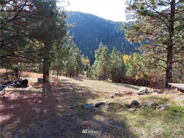27 Rock Face Drive, Curlew, WA 99118 (#1855261) :: Neighborhood Real Estate Group
