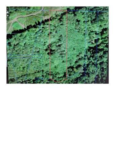 0 Sylvan P/N W10714005 Way Lot 2, Longview, WA 98632 (#1856090) :: Better Properties Real Estate