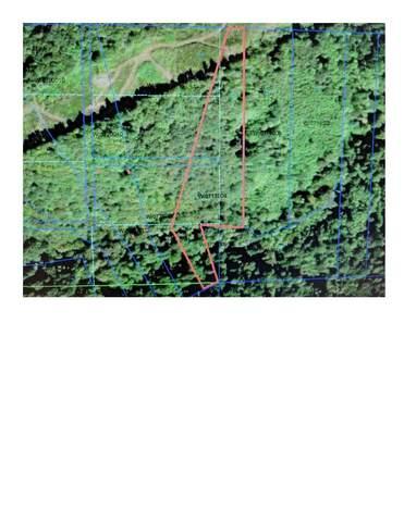 0 Sylvan P/N Wl0713004 Way Lot 3, Longview, WA 98632 (#1856096) :: Better Properties Real Estate