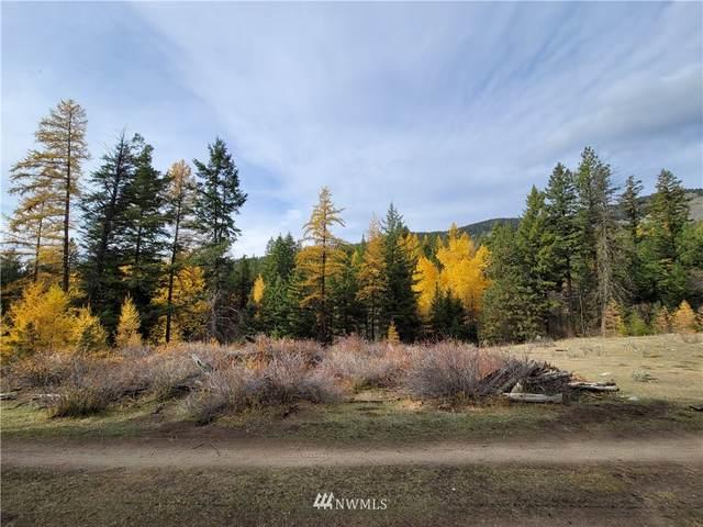 166 W High Country Drive, Tonasket, WA 98855 (MLS #1856734) :: Nick McLean Real Estate Group