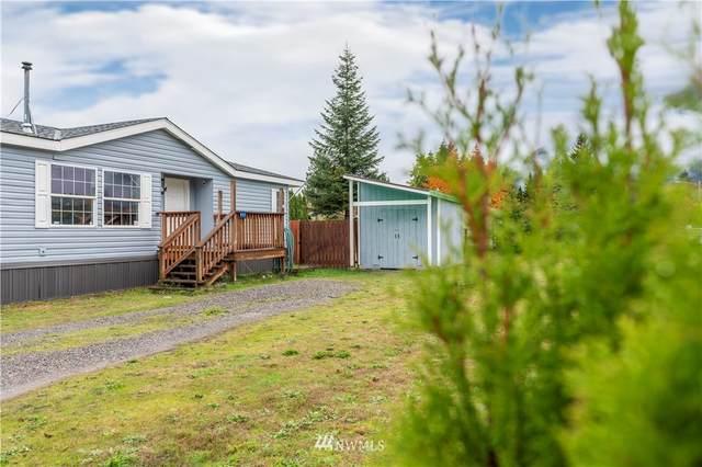852 Mountain Loop Highway, Darrington, WA 98241 (MLS #1857263) :: Reuben Bray Homes