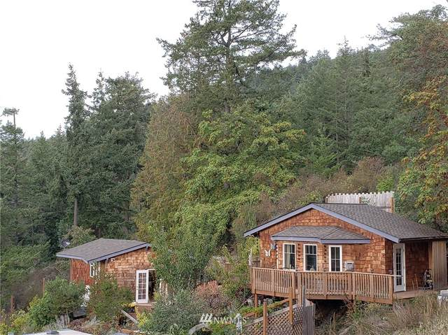 210 Gafford Lane, Orcas Island, WA 98245 (#1857270) :: Better Properties Real Estate