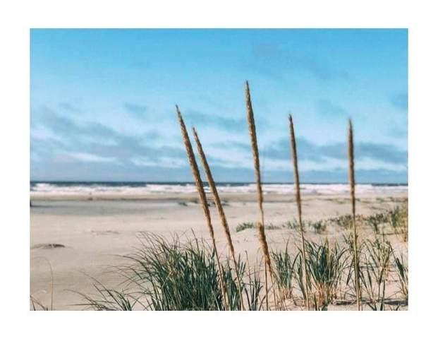90 Dunes Lane, Ocean Shores, WA 98569 (#1857431) :: Stan Giske