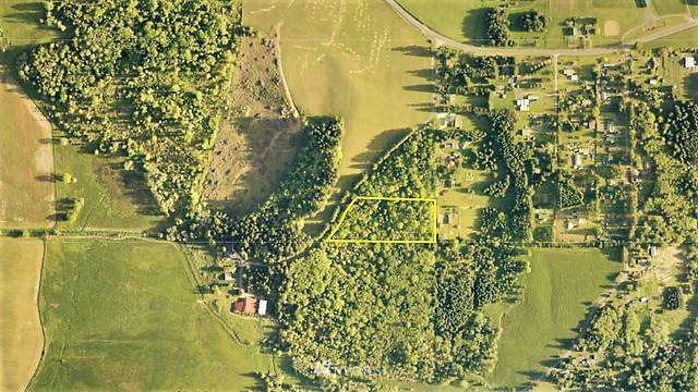 149 Peterson Road, Chehalis, WA 98532 (#1857504) :: Northwest Home Team Realty, LLC