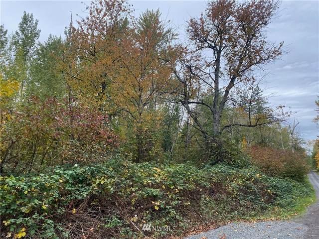0 Patton Road, Bellingham, WA 98226 (#1857532) :: Engel & Völkers Federal Way