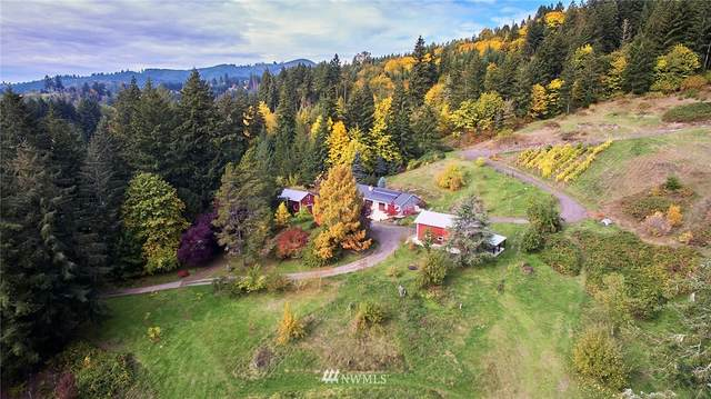 115 Finn Hall Road, Woodland, WA 98674 (MLS #1857758) :: Reuben Bray Homes