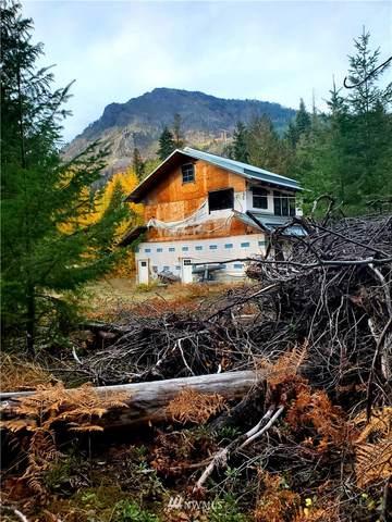 16756 Fir Drive, Leavenworth, WA 98826 (#1857800) :: Northwest Home Team Realty, LLC