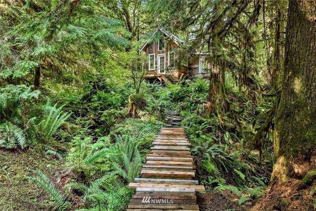 9277 Cornell Creek Road, Glacier, WA 98244 (#1858379) :: Northwest Home Team Realty, LLC