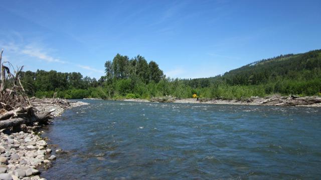 170 Glacier Dr, Mineral, WA 98355 (#247738) :: Ben Kinney Real Estate Team