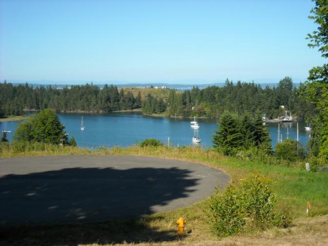 0 Lot 9 Marianne Meadows, Port Ludlow, WA 98365 (#446216) :: Ben Kinney Real Estate Team