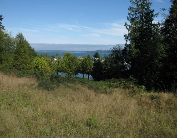 0 South Point Rd, Port Ludlow, WA 98365 (#617923) :: Pickett Street Properties