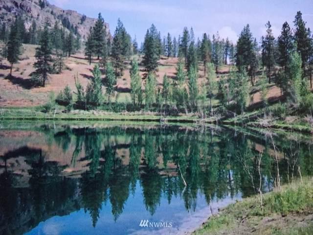6 Mist Lake Road, Tonasket, WA 98855 (#750295) :: McAuley Homes