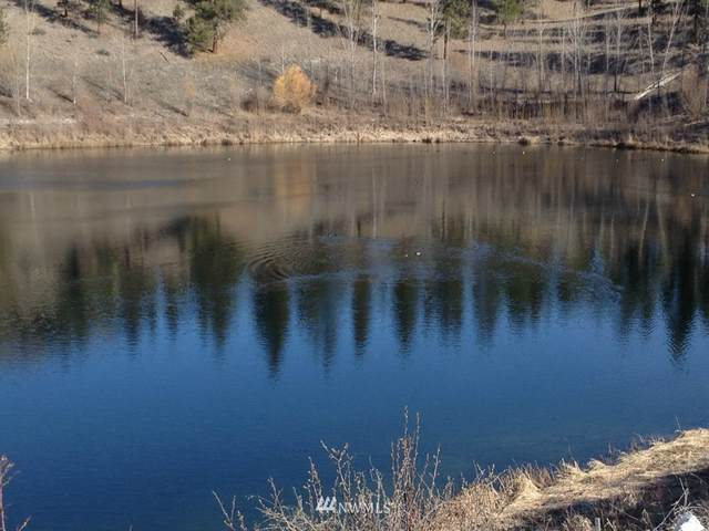 1 Mist Lake Road, Tonasket, WA 98855 (MLS #750388) :: Community Real Estate Group