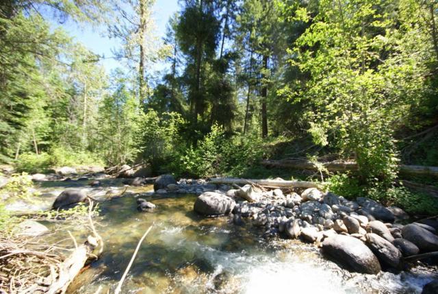 2 Mountainside Wy, Winthrop, WA 98862 (#751808) :: Ben Kinney Real Estate Team