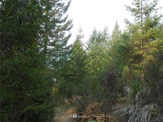 0 Alpine Drive, Packwood, WA 98361 (#839375) :: My Puget Sound Homes