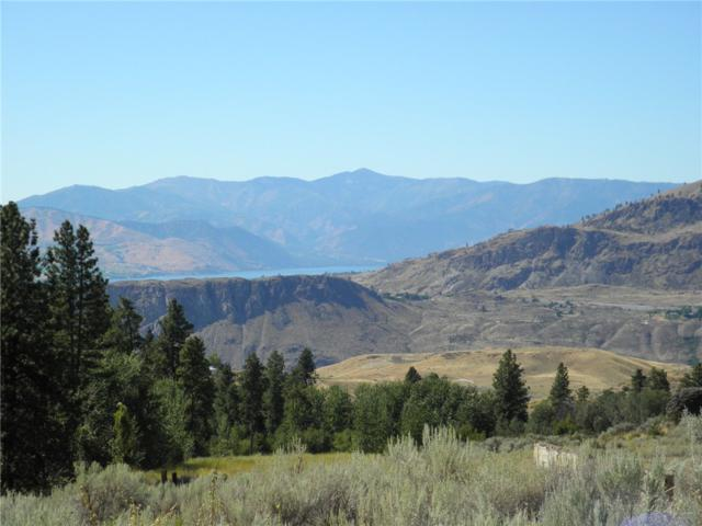 47 Corral Creek Dr, Orondo, WA 98843 (#857303) :: Ben Kinney Real Estate Team
