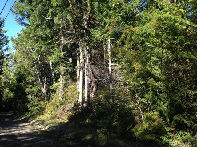1 Whitney Rd, Quilcene, WA 98376 (#865054) :: Homes on the Sound