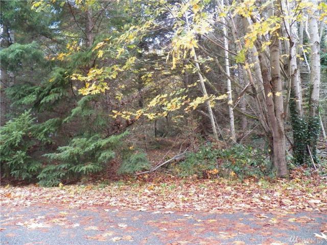 0 Park Dr, Camano Island, WA 98282 (#865808) :: Ben Kinney Real Estate Team