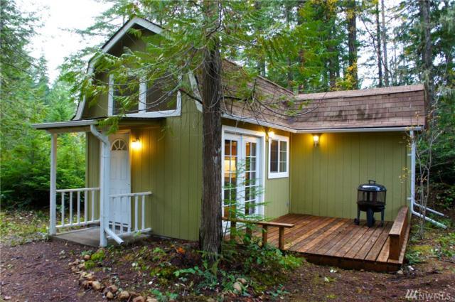 141 King, Brinnon, WA 98320 (#869743) :: Ben Kinney Real Estate Team