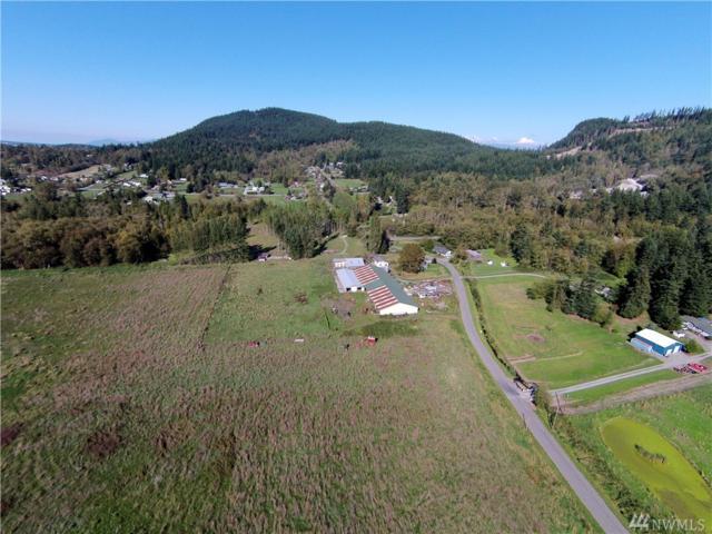 20251 E Stackpole Rd, Mount Vernon, WA 98274 (#873235) :: Ben Kinney Real Estate Team