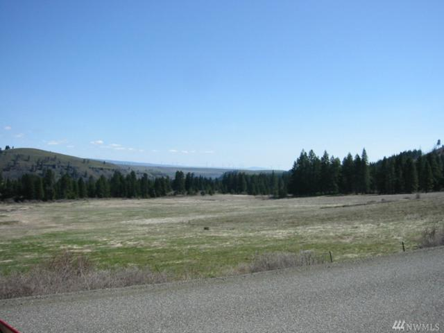 0-87xx Thorpe Prairie Rd, Cle Elum, WA 98922 (#873959) :: Ben Kinney Real Estate Team