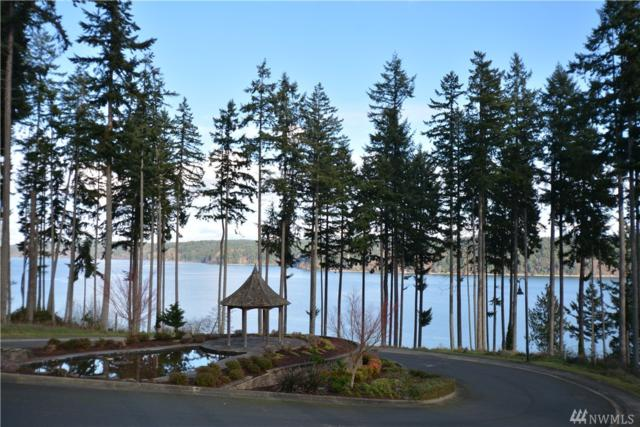 908 139th St Ct NW, Gig Harbor, WA 98332 (#890676) :: Homes on the Sound