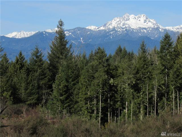 9 .6 Acres Lot 3 Wayne Rd NW, Seabeck, WA 98380 (#900074) :: Ben Kinney Real Estate Team