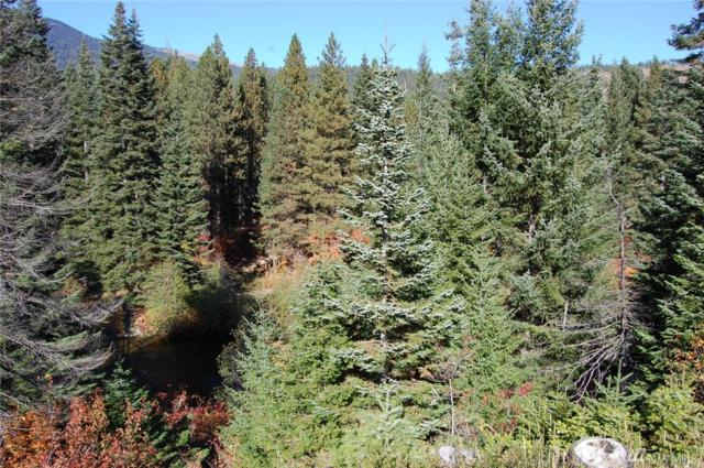 0-Lot 9 Hwy 2, Leavenworth, WA 98826 (#905586) :: Homes on the Sound