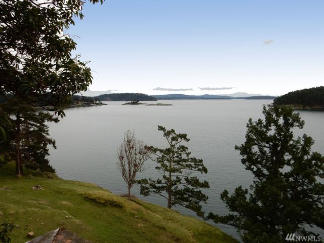 334 Harbor Vista Dr, Stuart Island, WA 98250 (#911455) :: Ben Kinney Real Estate Team